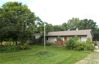 Single Family for sale in 5181 MORRICE Road, Webberville, MI, 48892