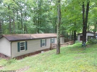 Residential Property for sale in 703 Valley Hills Estates Lane, Horner, WV, 26372