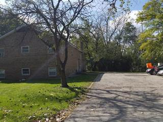 Multi-family Home for sale in 217 Kazwell Street, Willow Springs, IL, 60480