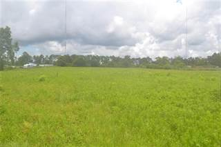 Comm/Ind for sale in 000 OLD HIGHWAY 31, Spanish Fort, AL, 36527