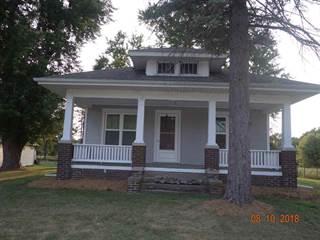 Single Family for sale in 323 N PINE Street, Williamsfield, IL, 61489