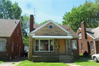 Single Family for sale in 14886 MAPLERIDGE Street, Detroit, MI, 48205