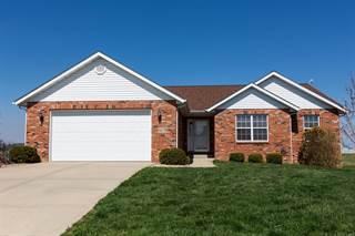 Single Family for sale in 967 Kleefeld Lane, Saint Libory, IL, 62282