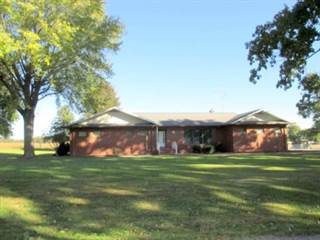 Single Family for sale in 404 W. Baltimore, Flat Rock, IL, 62427