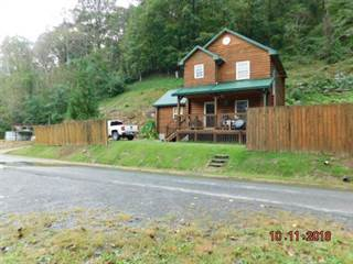 Single Family for sale in 8026 FRONTAGE ROAD, Iaeger, WV, 24844