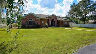 Single Family for sale in 6921 W DORMANY ROAD, Plant City, FL, 33565