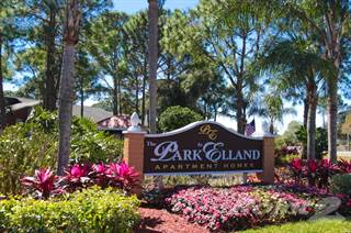 Apartment for rent in The Park at Elland - Amelia, Clearwater, FL, 33765