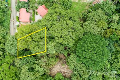 Lots And Land for sale in C - 24 - 1, Playa Pelada, Prime Location with Massive Guanacaste Tree, Nicoya Peninsula, Guanacaste