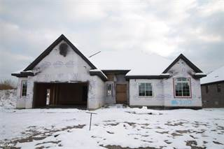 Single Family for sale in 21992 Chaucer, Greater Mount Clemens, MI, 48044