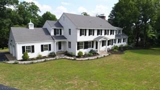 Single Family for sale in 154 OLD FARM RD, Basking Ridge, NJ, 07920