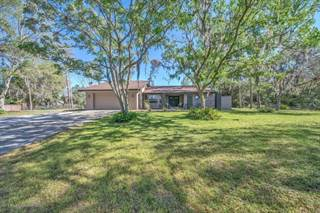 Single Family for sale in 7307 Jomel Drive, Spring Hill, FL, 34607