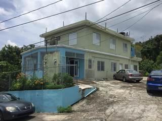 Residential Property for sale in Bo. Bahomemey, San Sebastian PR, Hoya Mala, PR, 00685
