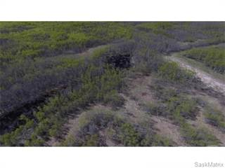 Land for sale in Cross Parcel E, RM of Lake Lenore No 399, Saskatchewan