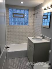 Apartment for rent in 11045 S. Homewood Ave - 11045H21, Chicago, IL, 60643