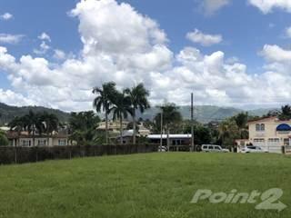 Land for sale in Calle Amor, Buena Vista, Bayamon, PR, 00956