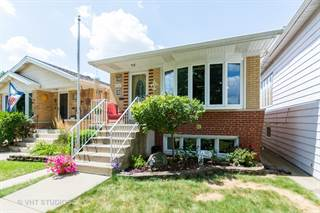 Photo of 11342 S. Troy Street, Chicago, IL