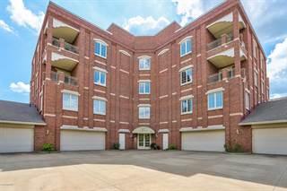 Condo for sale in 141 Central Avenue 310, Holland, MI, 49423