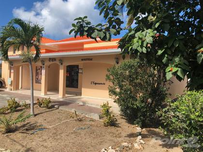 Commercial for sale in Commercial space and one-bedroom home, Grand-case, Saint-Martin (French)