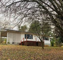 Single Family for sale in 1441 Roberson Springs Rd, Loudon, TN, 37774