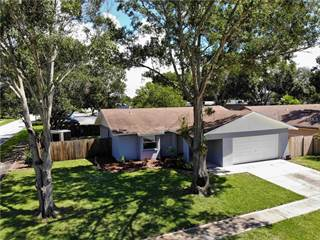 Single Family for sale in 1343 HOMESTEAD DRIVE, Palm Harbor, FL, 34683