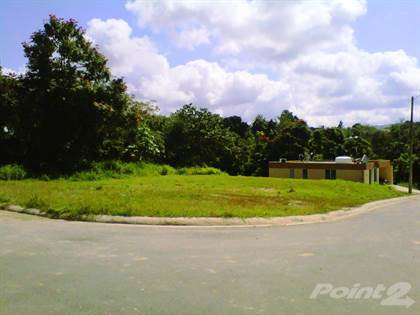 Lots And Land for sale in Bo Valenciano Abajo, Juncos, PR, 00777