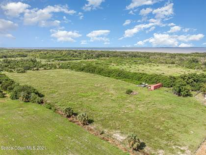 Farm And Agriculture for sale in 0 Davis Road, Mims, FL, 32754