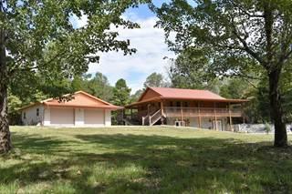 Single Family for sale in 601 Karbers Ridge Road, Elizabethtown, IL, 62931