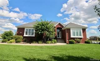 Single Family for sale in 8286 HUNTERS RIDGE Drive, Newport, MI, 48166