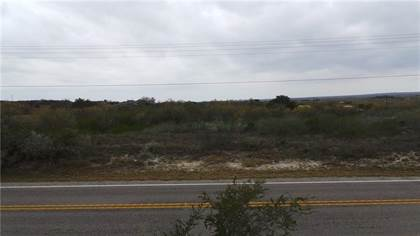 Lots And Land for sale in Lot 13 FM 534, Sandia, TX, 78383