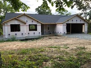Single Family for sale in 1975 Madison 221, Fredericktown, MO, 63645