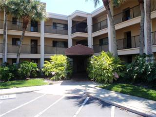 Houses Apartments For Rent In Clearwater Point Fl Point2 Homes