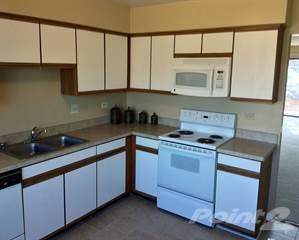 Apartment for rent in Parkside Estates - 1 Bedroom Remodeled, Glendale Heights, IL, 60139