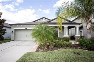 Single Family for sale in 11524 ESTUARY PRESERVE DRIVE, Riverview, FL, 33579