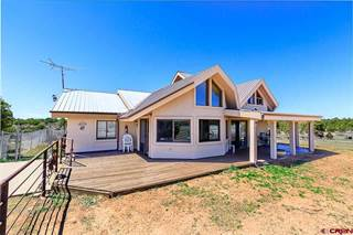 Single Family for sale in 29323 Road W, Dolores, CO, 81323