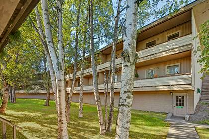 Apartment for rent in 4255 Old Seward Hwy, Anchorage, AK, 99503