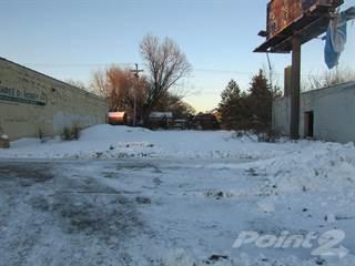 Land for sale in 10522 Whittier, Detroit, MI, 48224