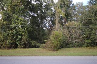 Land for sale in 00 174th Pl, Fanning Springs, FL, 32693