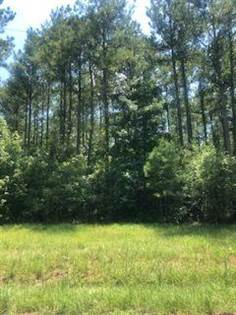 Lots And Land for sale in 0 Bethel Church Rd, Seminary, MS, 39479