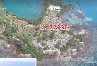 Other Real Estate for sale in 2.99 acres island property situated 6 miles east of the Placencia peninsular - southern Belize, Placencia, Stann Creek