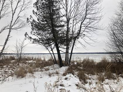 Lots And Land for sale in 4302 S Bay Mills Point RD, Brimley, MI, 49715