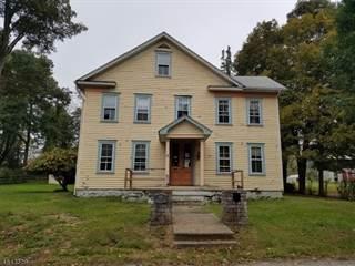 Single Family for sale in 441 DELAWARE AVE, Belvidere, NJ, 07823