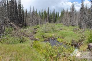 Land for sale in 160 Acres North East Aneko Creek, Chilcotin, Kluskoil Park, British Columbia