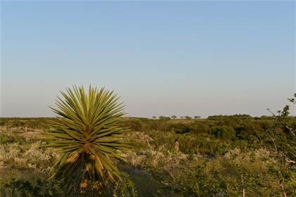 Lots And Land for sale in 00 Hidden Creek Dr, Orange Grove, TX, 78372