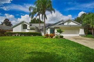 Single Family for sale in 1597 POWDER RIDGE DRIVE, Palm Harbor, FL, 34683