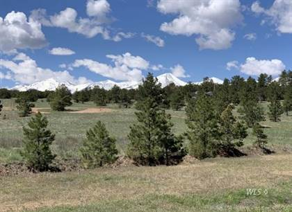 Lots And Land for sale in 1562 19th Trail, Cotopaxi, CO, 81223