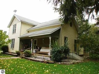 Single Family for sale in 115 S Elizabeth Street, Greater Perrinton, MI, 48856