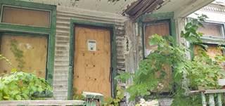 Single Family for sale in 3480 VAN DYKE Street, Detroit, MI, 48214