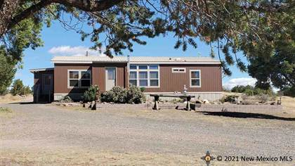Residential Property for sale in 19 Quarter Horse Court, Quemado, NM, 87829