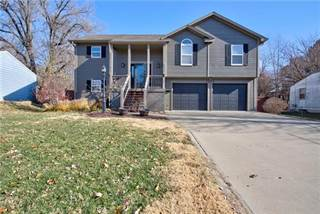 Single Family for sale in 7935 ROBINSON Street, Overland Park, KS, 66204