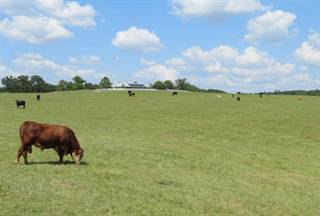 Farm And Agriculture for sale in 5200 Curtner Road, Norwood, MO, 65717